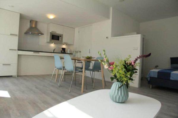 Appartement Beukelaar - 2 personen - Noord-Holland - aangepaste keuken