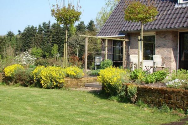 Chalet Vrijzicht - Nederland - Drenthe - 2 personen - tuin