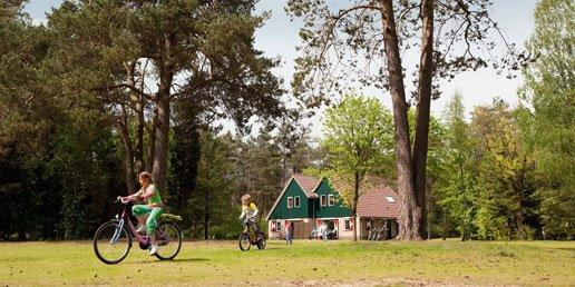 Landal Coldenhove | 8-persoons extra toegankelijke bungalow | type 8LT1 | Eerbeek